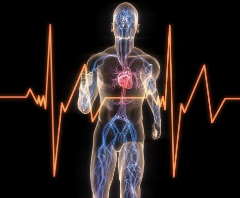 Relazione critica tra frequenza respiratoria, frequenza cardiaca e cadenza